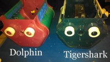 Maytronics Dolphin  Tigershark